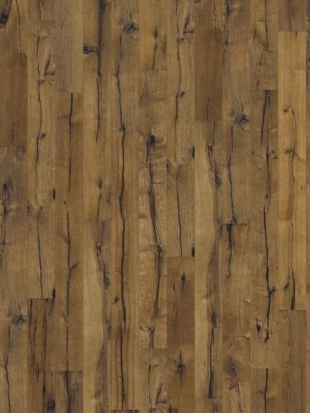 Dusumea Stejar Maggiore