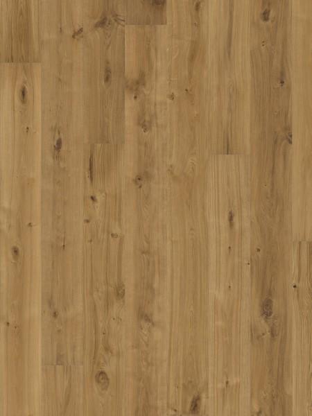 Dusumea Stejar Vedbo